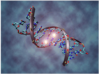epigenetics and autism