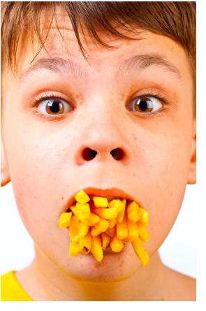 high fat diets and adhd